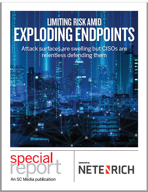 Limiting risk amid exploding endpoints