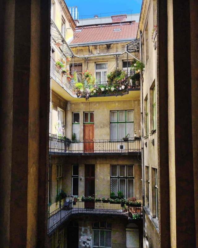 Carpe Noctem Hostel Budapest Decor