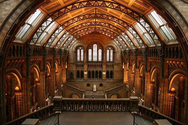 The best free museums in London - The Natural History Museum