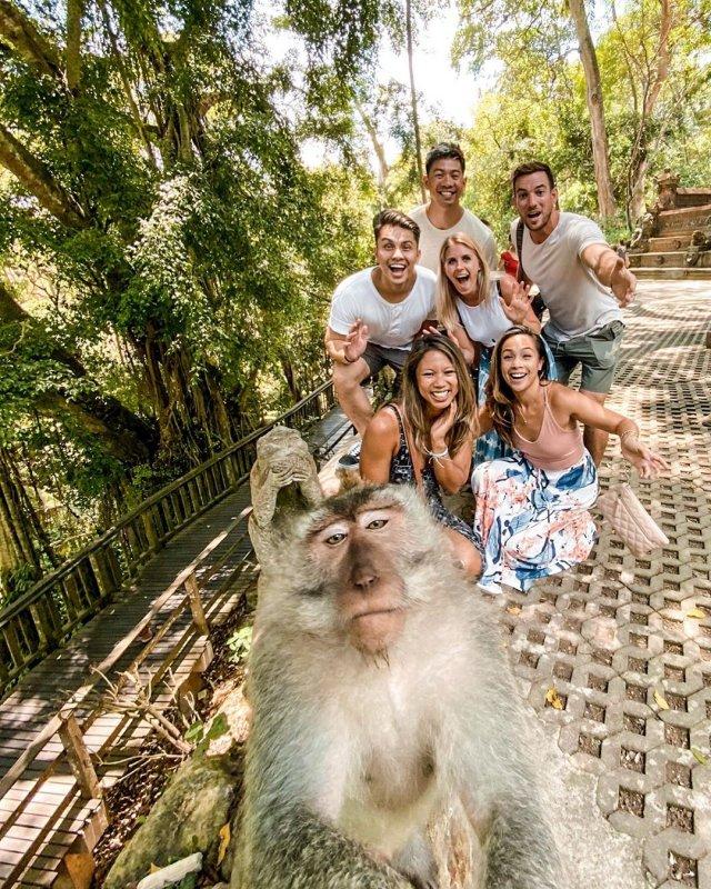 Sacred Monkey Forest Bali Auszeit Auslandsaufenthalt