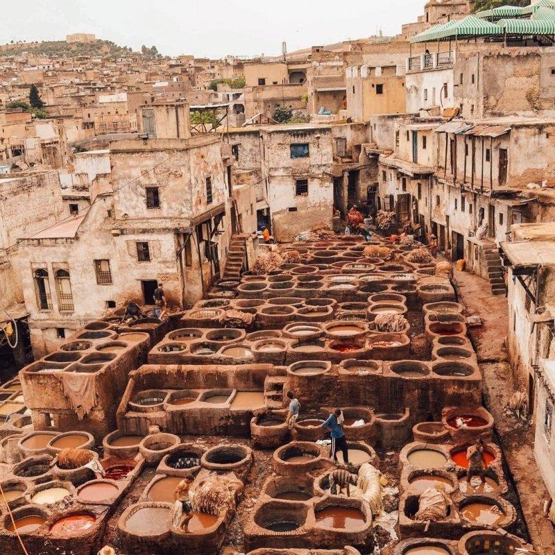 Günstig nach Marokko: Leder Gerber