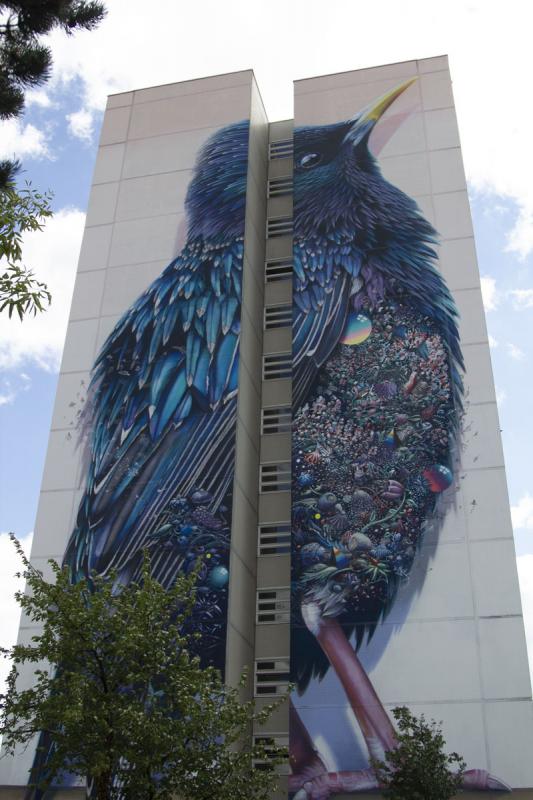 Streetart Berlin Giant Starling