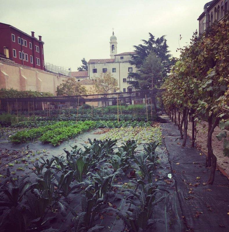 Carmelitani Scalzi Vegetable Garden behind the church