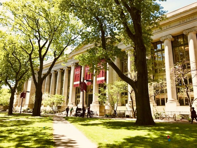 Study like you're at a Harvard summer school