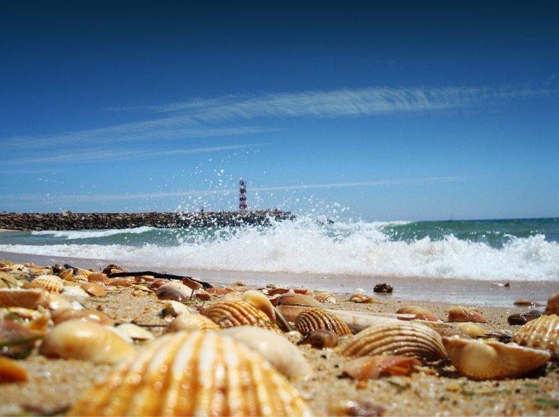O que fazer no Algarve em setembro - Faro