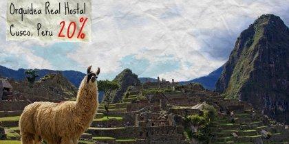 Orquidea, Real Hostal, Cusco Peru