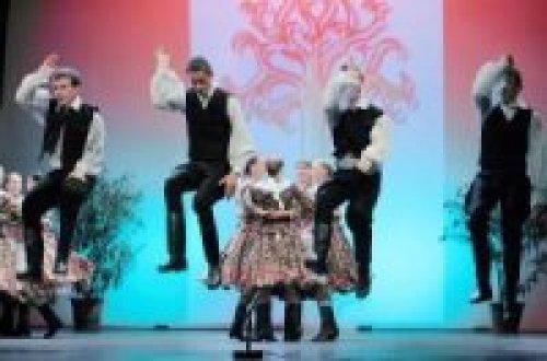 Zomer in Pecs: Theater, Muziek & Traditionele Festivals