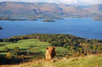 Budgetguide till Glasgow, Loch Lomond och Trossachs National Park