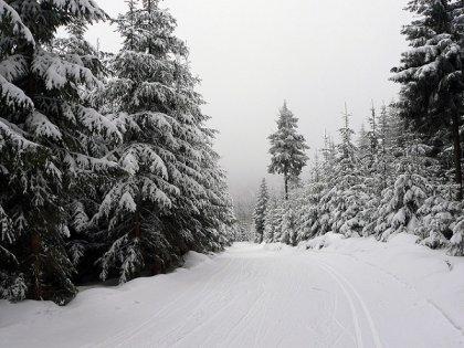 Czech skiing