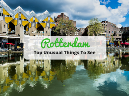 看見與眾不同的鹿特丹