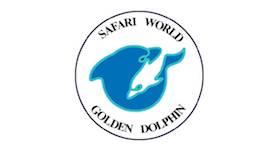 Golden Dolphin Safari
