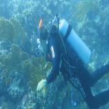 Coastal Survey Project