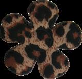 Applicatie Bloem met tijgerprint