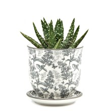 Small Plant Pot Grey Forest Small