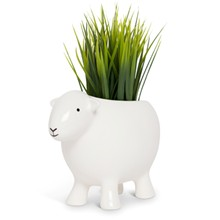 Herdy White Planter