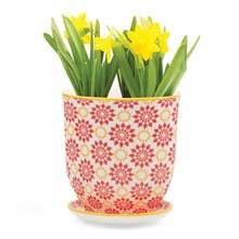 Large Plant Pot Red Stars