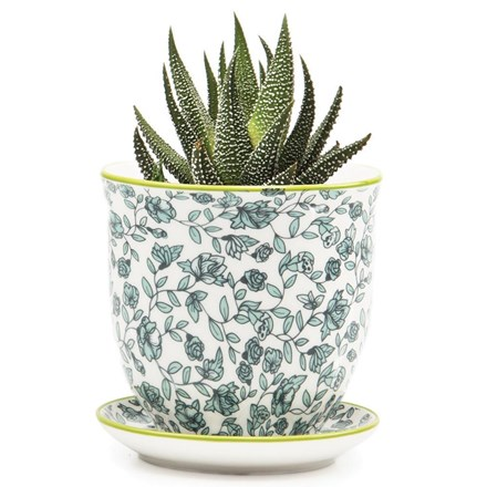 Small Plant Pot Green Flower