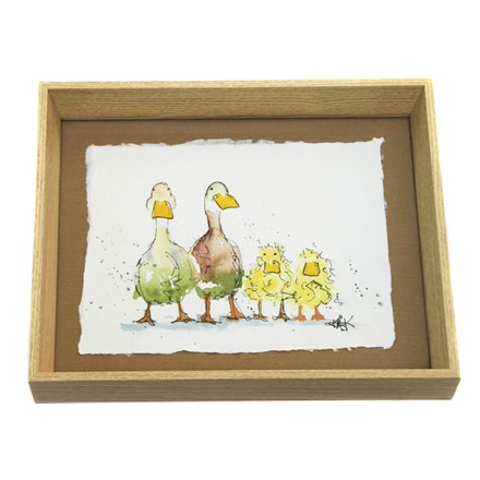 Pen and Wash Ducks and Ducklings Picture