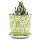 Small Plant Pot Green Gardens