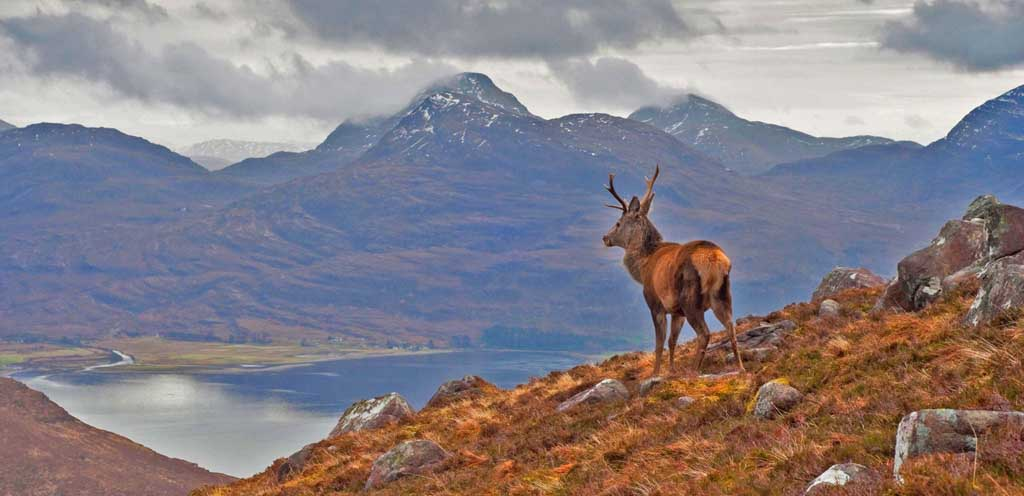 jobs in the highlands and islands