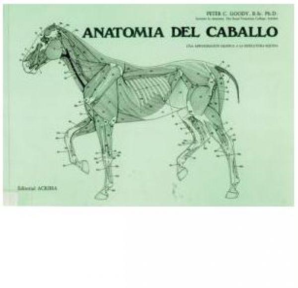 Libro Anatomía Del Caballo en la tienda ecuestre Hipisur - La más ...