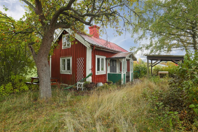 kuk söker fitta Odensbacken Sverige