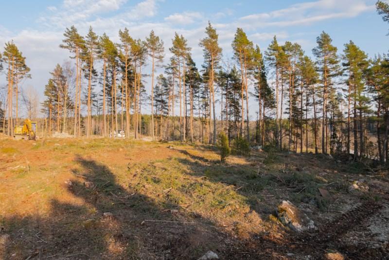 Tallbovgen 3A Uppsala Ln, Blsta - unam.net