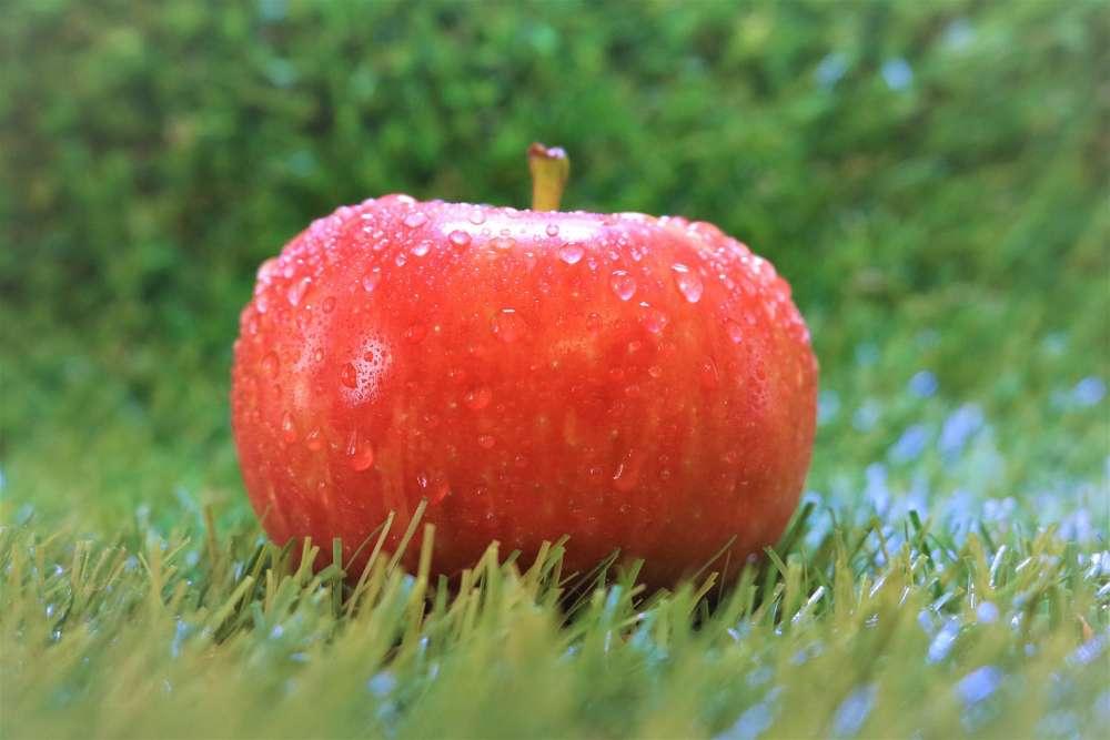 Escaped Apple