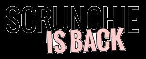 Scrunchie is Back