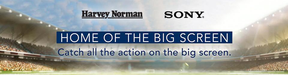 Sony Big Screen Banner