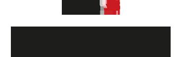 Dyson v8 Logo and Description