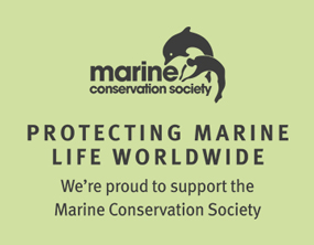 Silentnight Protecting Marine Wildlife Worldwide