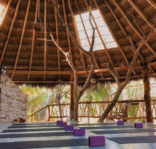 Alaya Tulum Yoga