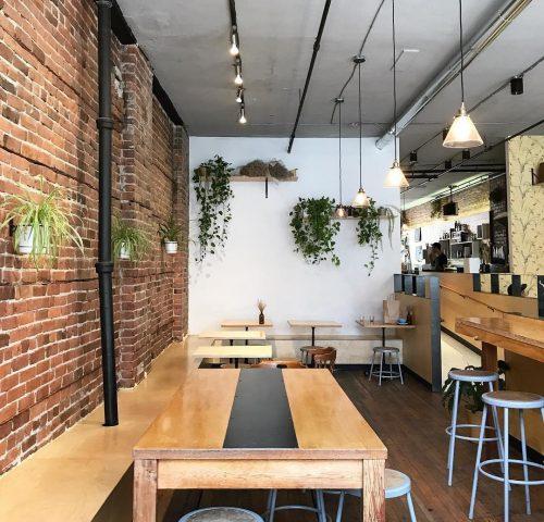 Birds & the Beets Café