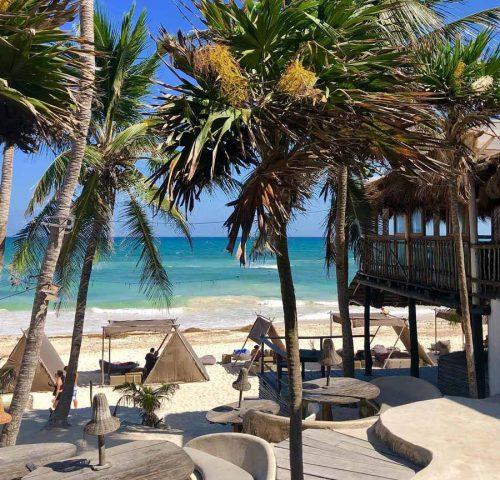 Projet Papaya Playa