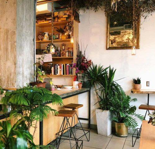 Sol Café