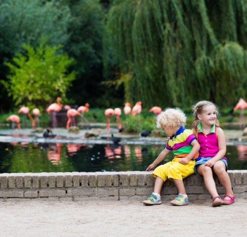 Kinder in Park