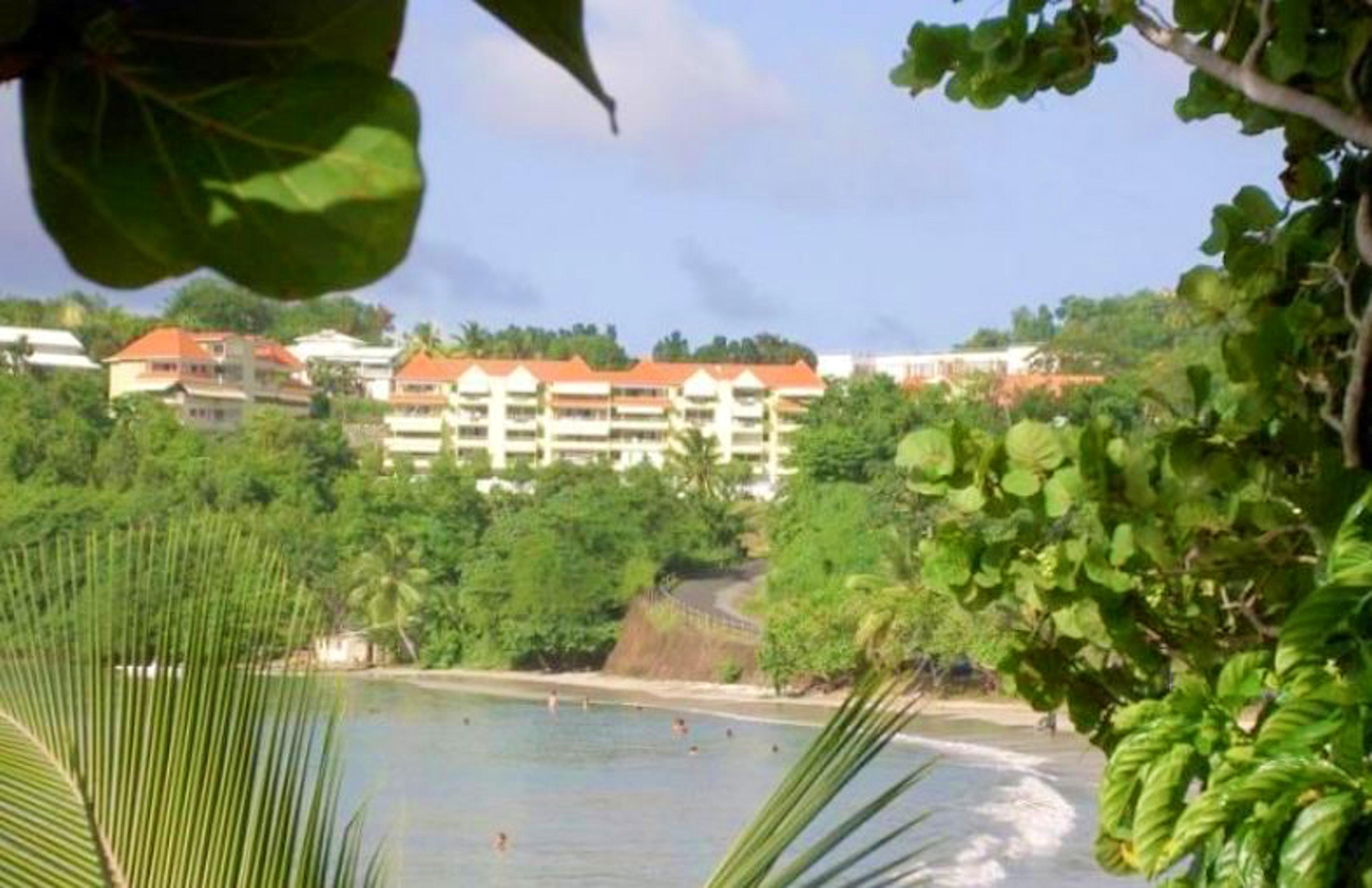 Apartamento de 2 habitaciones en La Trinité, con magnificas vistas al mar, terraza amueblada y WiFi - a 150 m de la playa