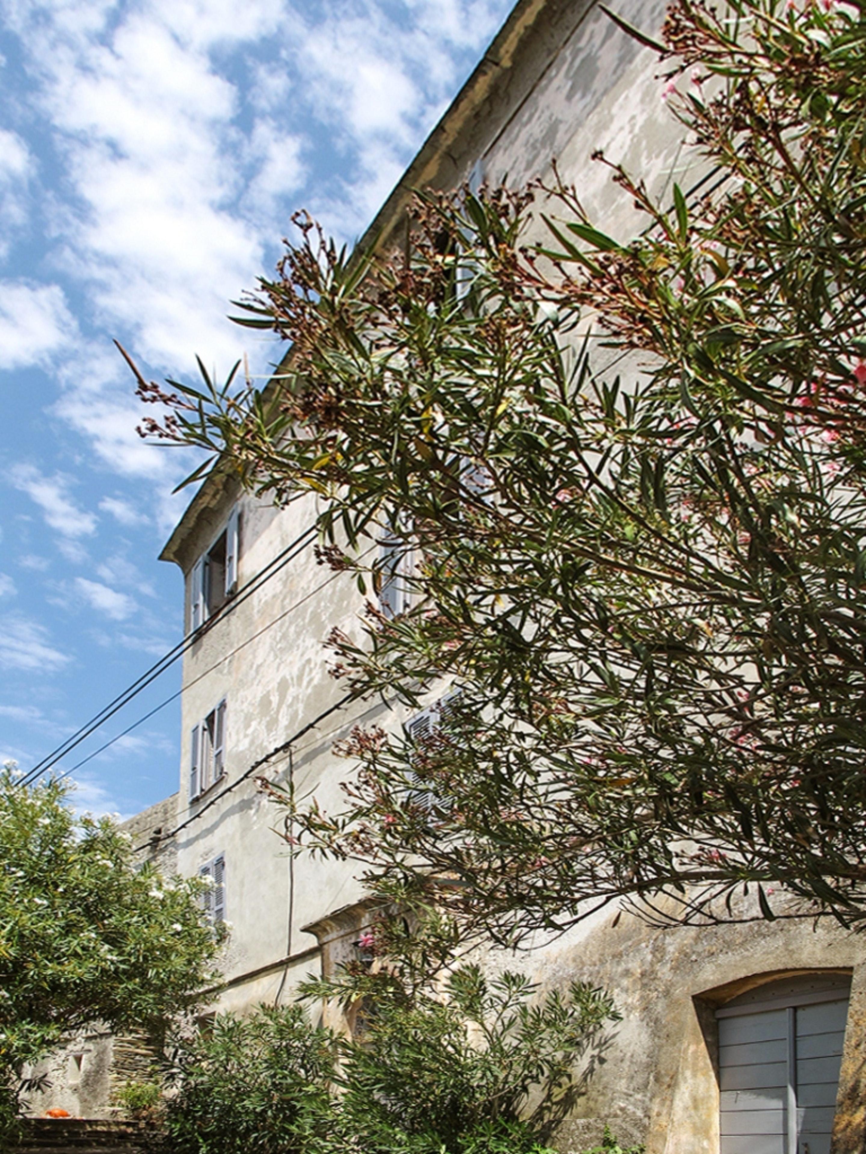 Maison de vacances Haus mit 9 Schlafzimmern in Centuri mit herrlichem Meerblick, möbliertem Garten und W-LAN  (2202571), Centuri, Haute-Corse, Corse, France, image 9