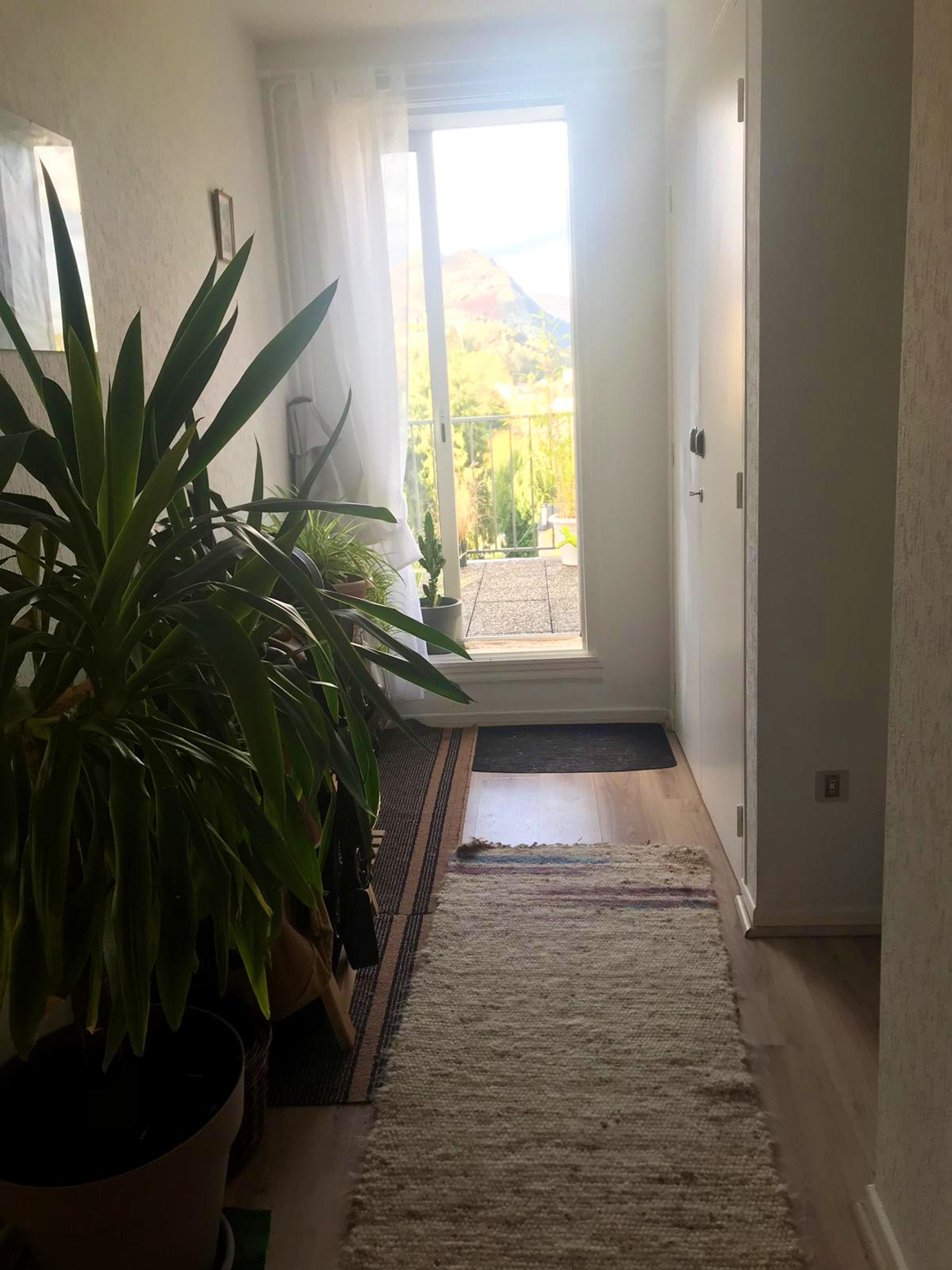 Ferienwohnung Wohnung mit einem Schlafzimmer in Lourdes mit möblierter Terrasse (2693936), Lourdes, Hautes-Pyrénées, Midi-Pyrénées, Frankreich, Bild 27