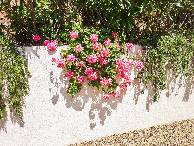 Ferienhaus Villa mit 5 Schlafzimmern in La Croix-Valmer mit privatem Pool, eingezäuntem Garten und W- (2201685), La Croix Valmer, Côte d'Azur, Provence - Alpen - Côte d'Azur, Frankreich, Bild 31