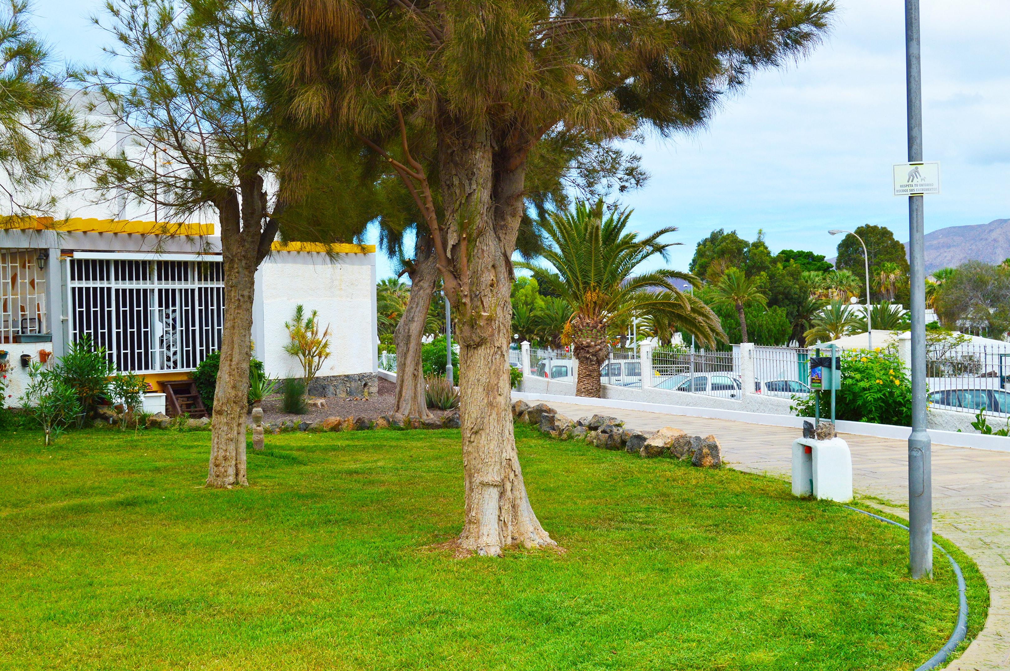 Appartement de vacances Studio in Santa Cruz de Tenerife mit Pool und möbliertem Garten (2218191), San Miguel, Ténérife, Iles Canaries, Espagne, image 15