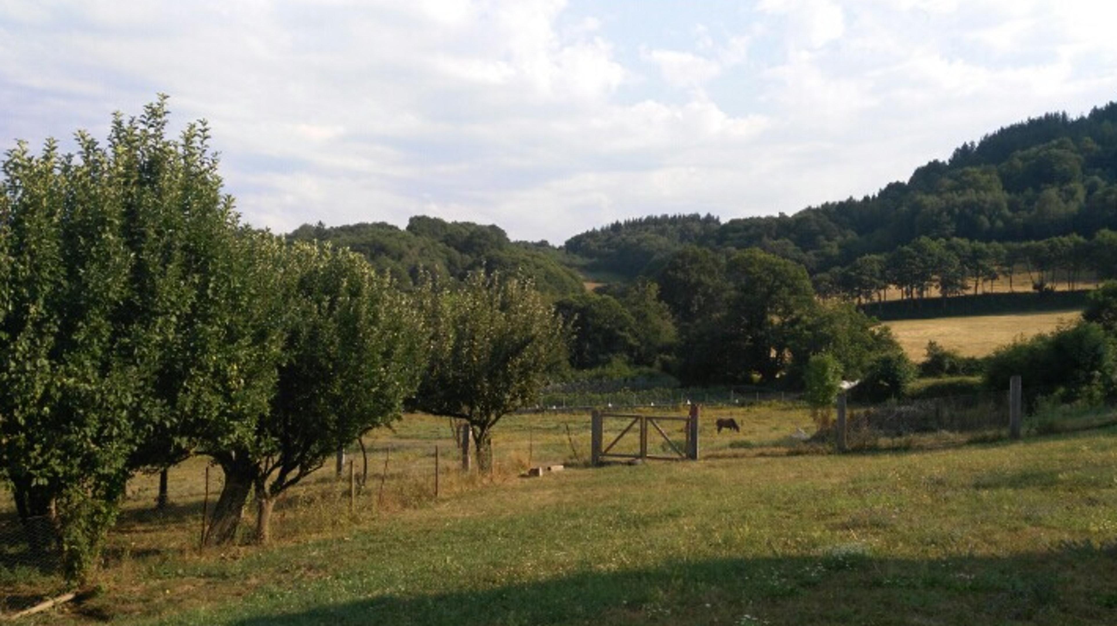 Ferienhaus Haus mit 4 Schlafzimmern in Baralla mit möbliertem Garten (2202040), Baralla, Lugo, Galicien, Spanien, Bild 21