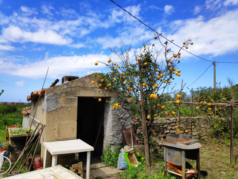 Ferienwohnung Studio in Mongiove mit eingezäuntem Garten - 800 m vom Strand entfernt (2599796), Patti, Messina, Sizilien, Italien, Bild 21