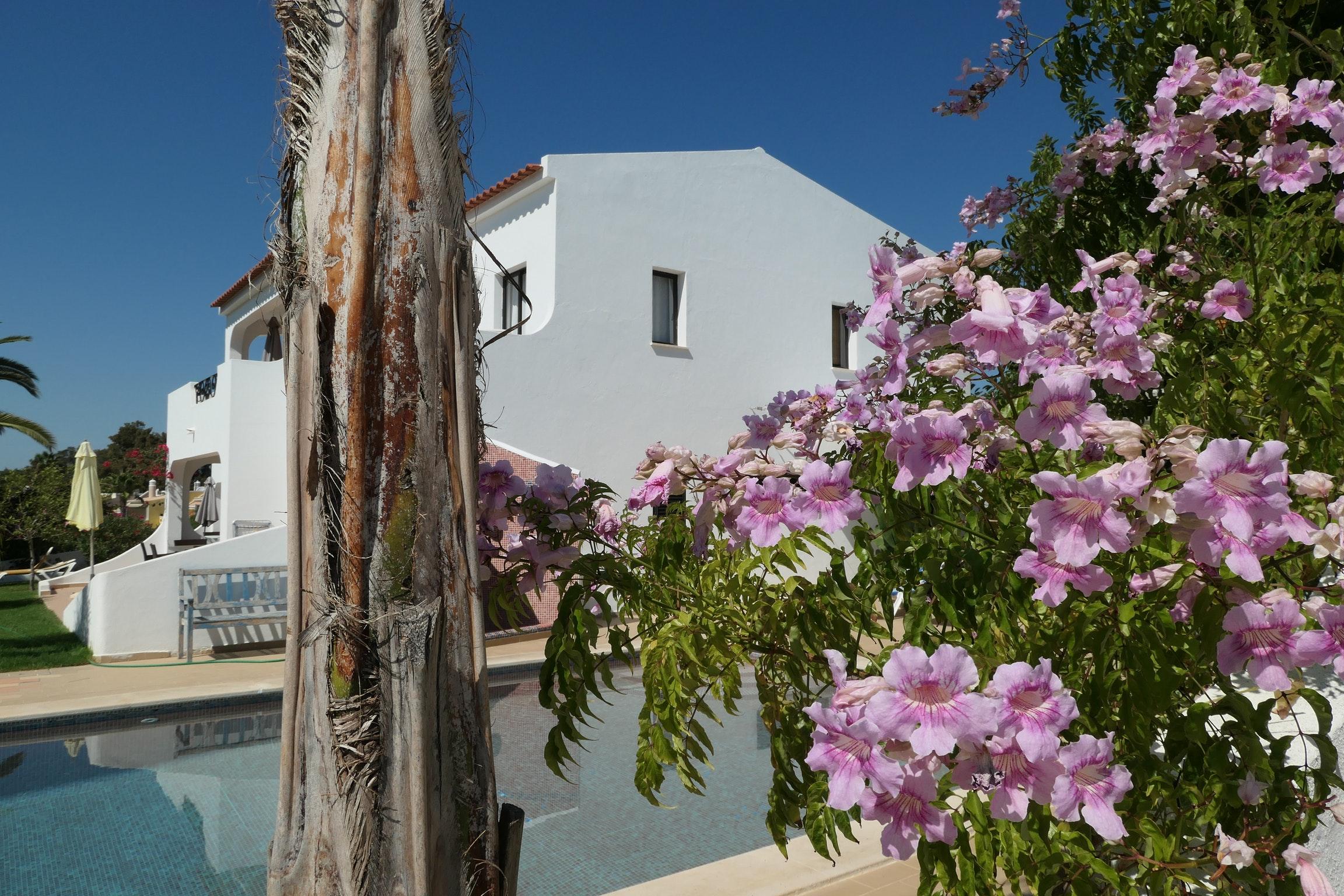 Ferienwohnung Wohnung mit 2 Schlafzimmern in Carvoeiro mit Pool, eingezäuntem Garten und W-LAN - 500 m v (2622212), Carvoeiro, , Algarve, Portugal, Bild 19