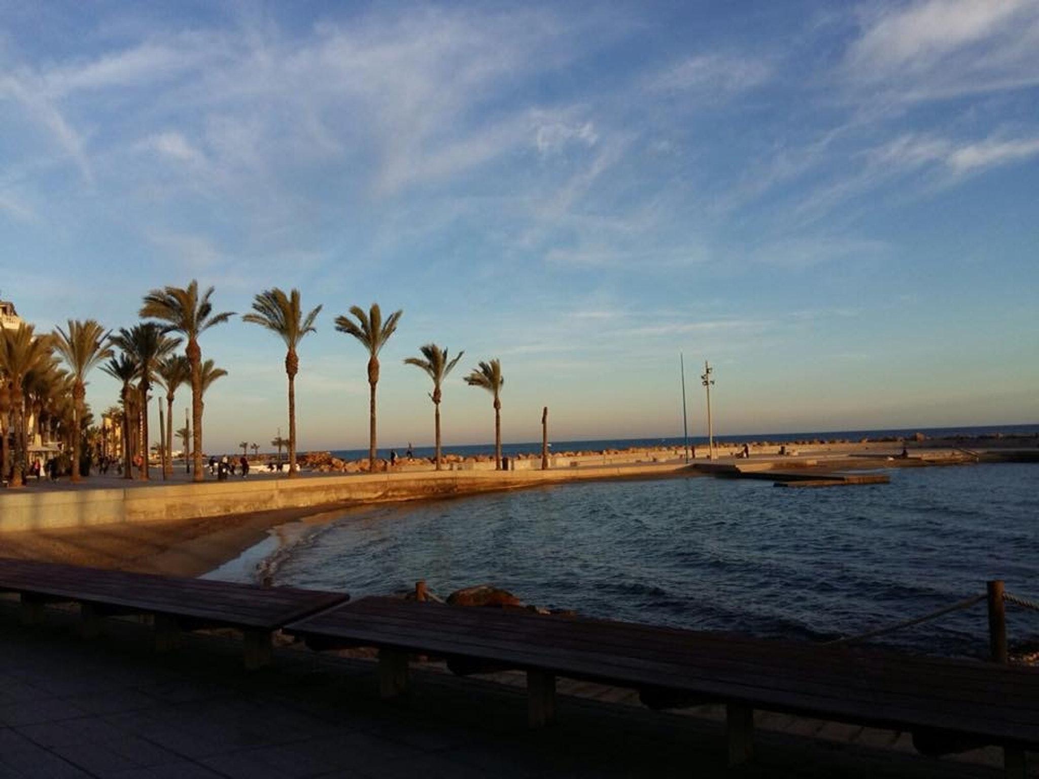 Ferienwohnung Wohnung mit 2 Schlafzimmern in Torrevieja mit Pool und möblierter Terrasse - 400 m vom Str (2342556), Torrevieja, Costa Blanca, Valencia, Spanien, Bild 37