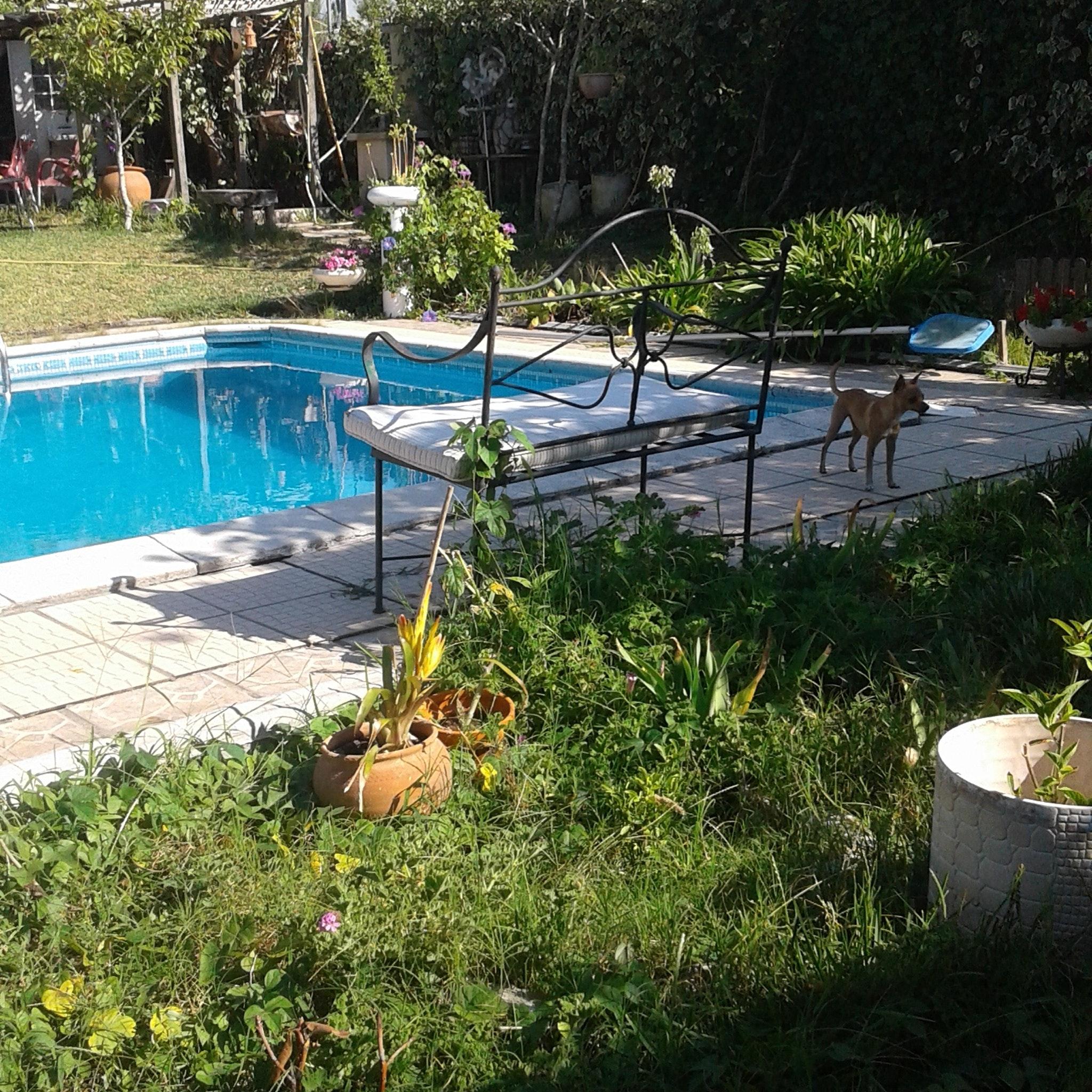 Holiday house Haus mit einem Schlafzimmer in Nazaré mit Pool, eingezäuntem Garten und W-LAN - 7 km vom S (2410448), Nazaré, Costa de Prata, Central-Portugal, Portugal, picture 9