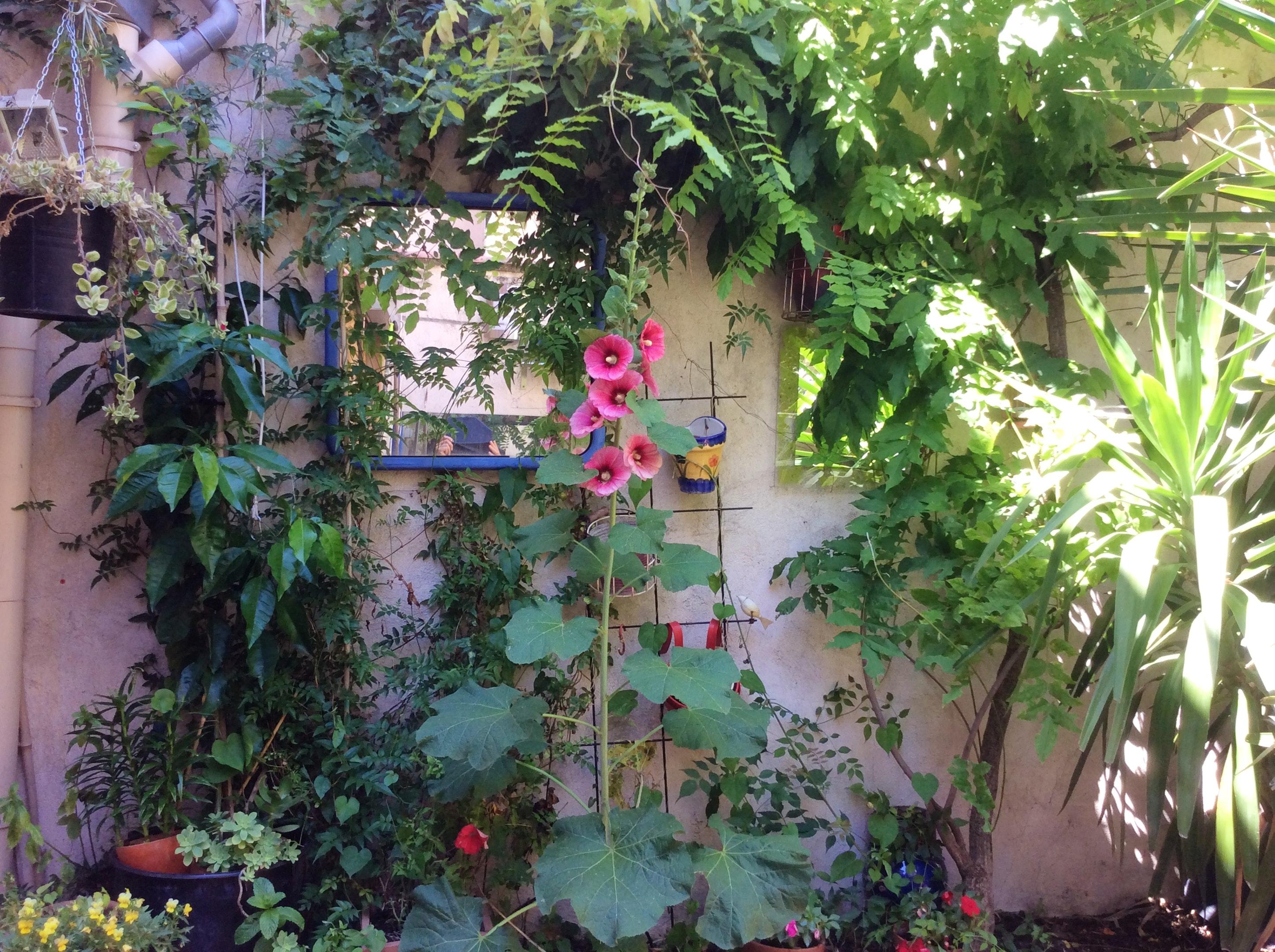 Holiday house Haus mit 2 Schlafzimmern in Avignon mit möblierter Terrasse und W-LAN (2407253), Avignon, Vaucluse, Provence - Alps - Côte d'Azur, France, picture 24