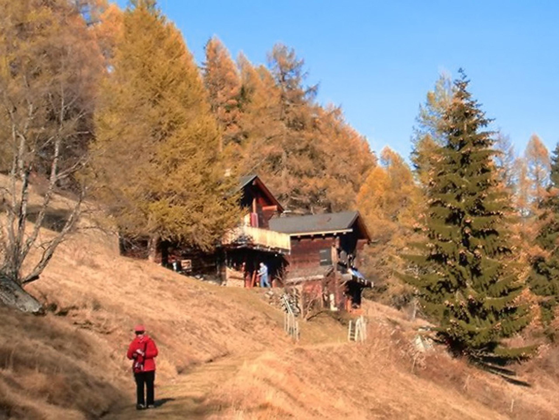 Ferienwohnung Wohnung mit 2 Schlafzimmern in Bellwald mit toller Aussicht auf die Berge, Balkon und W-LA (2201042), Bellwald, Aletsch - Goms, Wallis, Schweiz, Bild 15