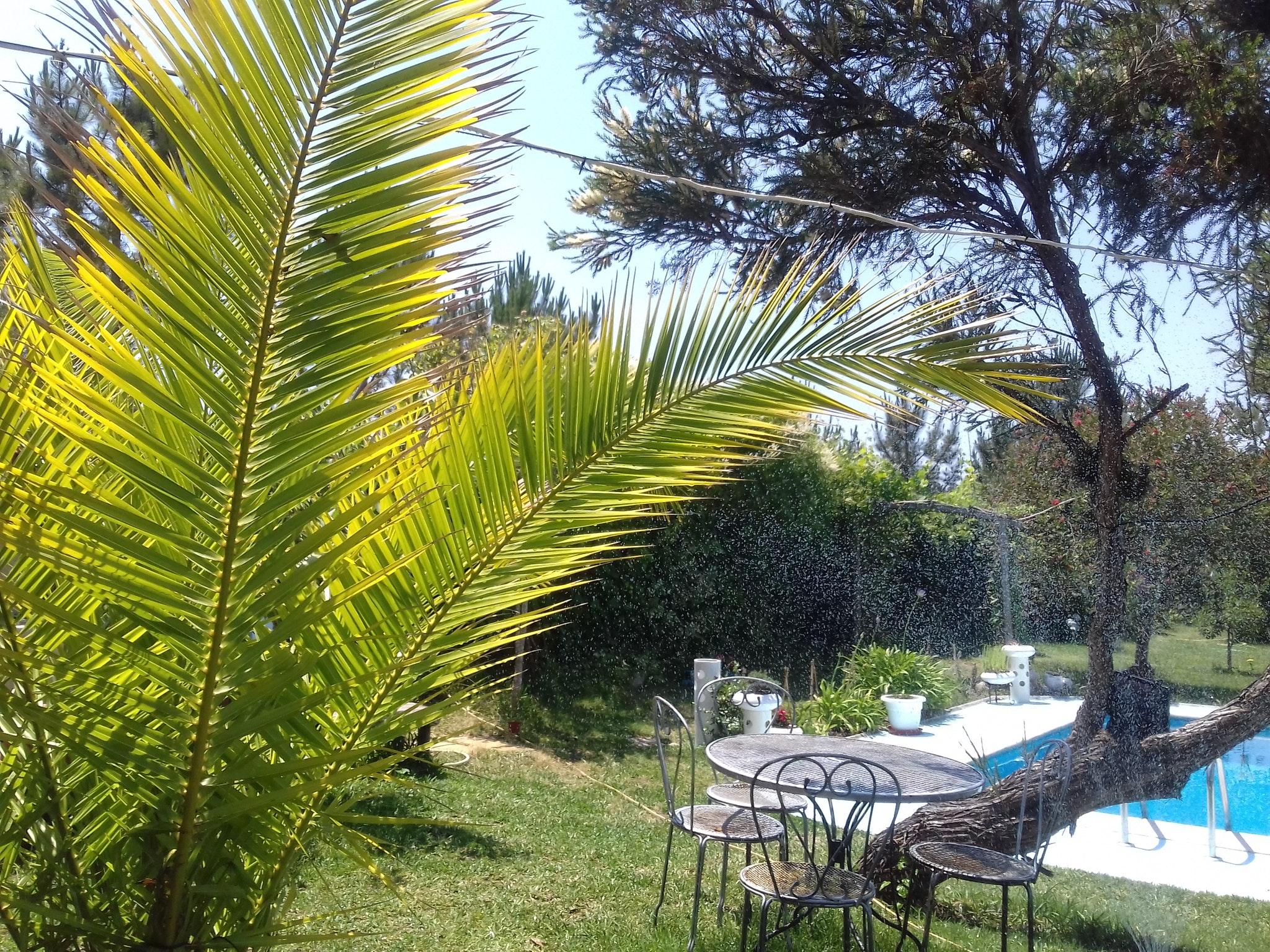 Holiday apartment Studio in Nazaré mit Pool, möbliertem Garten und W-LAN - 7 km vom Strand entfernt (2410449), Nazaré, Costa de Prata, Central-Portugal, Portugal, picture 7